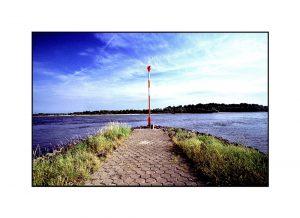Rhein in Rees mit Bune